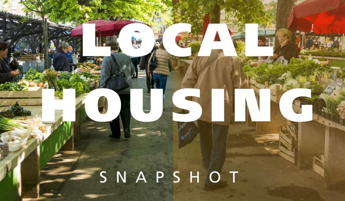 Local Housing Snapshot image